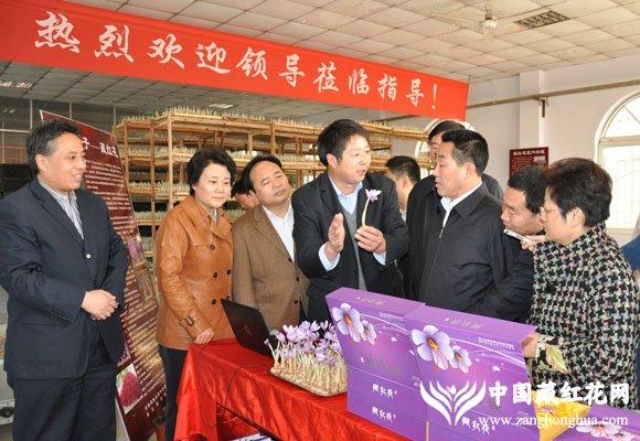 省长一行听取高致明教授关于藏红花药用和美容功效的介绍