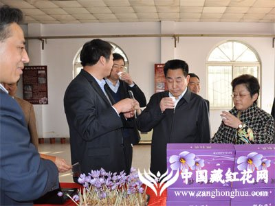 河南省省长关注雪域红金藏红花茶